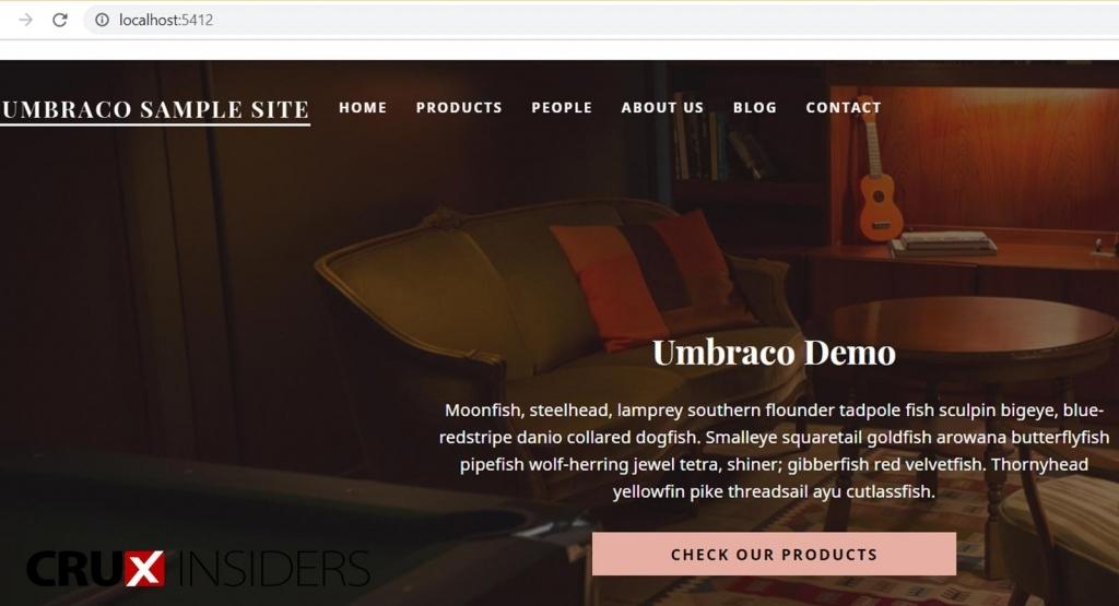 Step-11-Open-your-umbraco-starter-website
